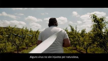 Telenotícies migdia - 07/05/2020
