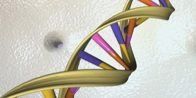 La comunidad científica compara el hallazgo con la secuenciación del genoma humano.  (Foto: Reuters)