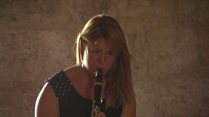 Concerts per a una persona al Deltachamber Music Festival d'Amposta