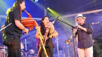El FIMPT arriba a la 40a edició buscant afegir nou públic a la música d'arrel