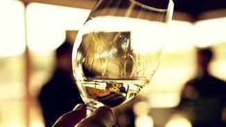 MeteoTaula 204 - Cellers Avgvstus, vins amb història i vinagres d'alta qualitat