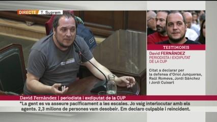 Judici del procés - Declaració de David Fernàndez 25/04/2019