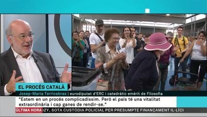 """Terricabras: """"No hi ha ni un jutge a Europa que accepti les raons de Llarena"""""""