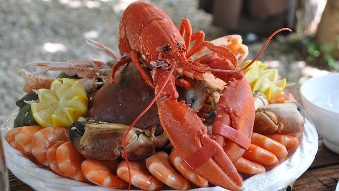 Menjar més peix i marisc fa practicar més sexe i facilita l'embaràs