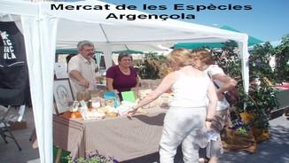 MeteoTerra- Josep Mestre, pagès ecològic