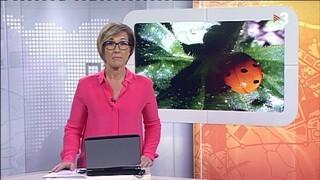 Telenotícies comarques Girona - 19/05/2016