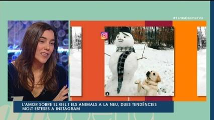 La neu a Instagram no constipa
