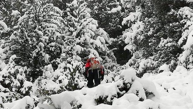 Localitzats amb vida els excursionistes perduts des de dissabte al Puigpedrós