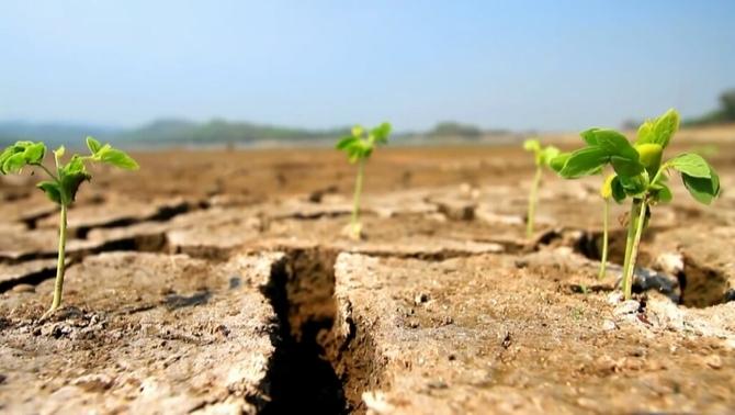 Ja hem consumit tots els recursos naturals que el planeta pot generar en un any