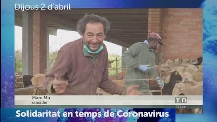 Dies de Coronavirus