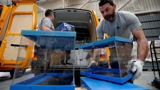 Urnes i paperetes blaves per a les eleccions al Parlament Europeu (Reuters)