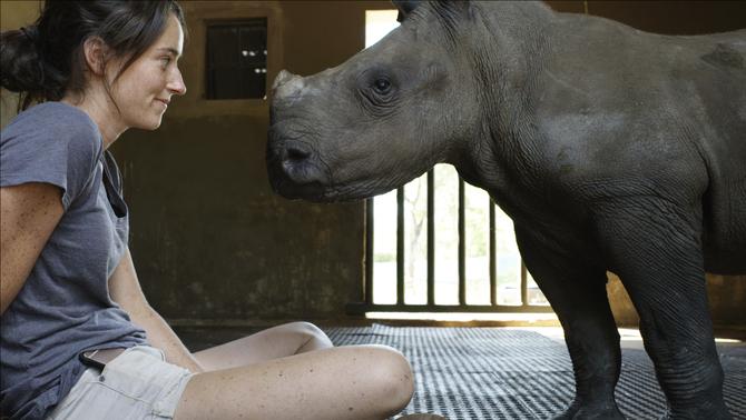 """""""L'orfenat de rinoceronts"""""""