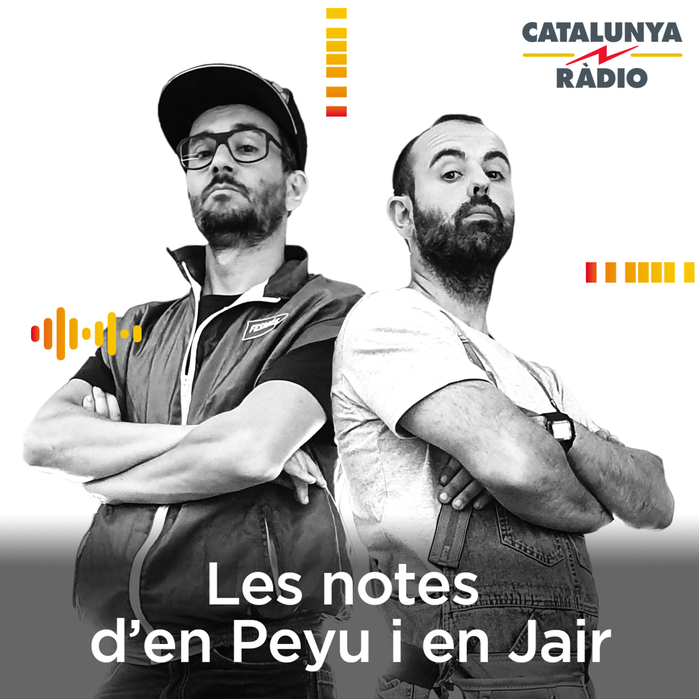 Les notes d'en Peyu i en Jair